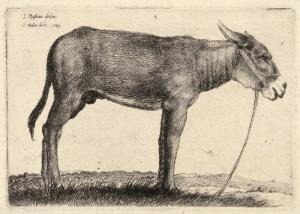 γάιδαρος